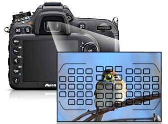 Nikon D7100 có khả năng lấy nét nhanh chóng