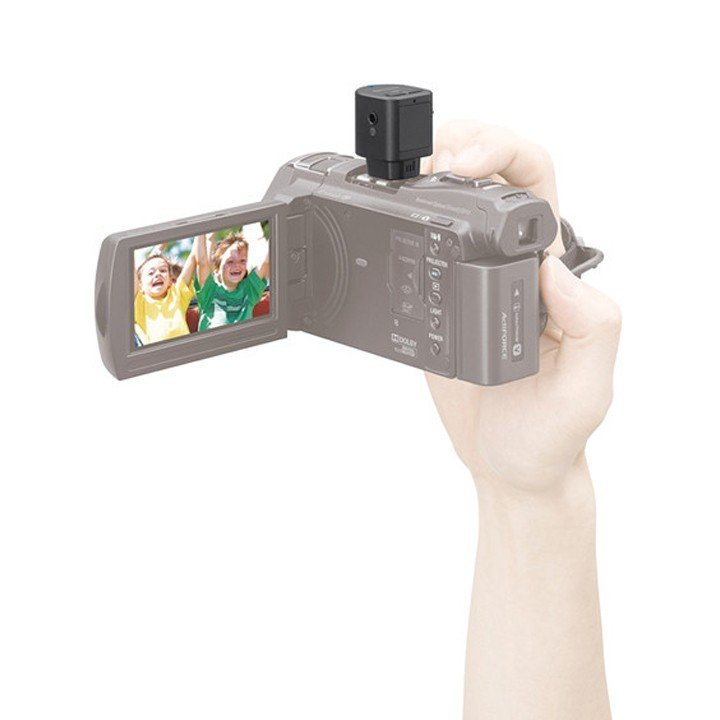 Sony ECM-W1M